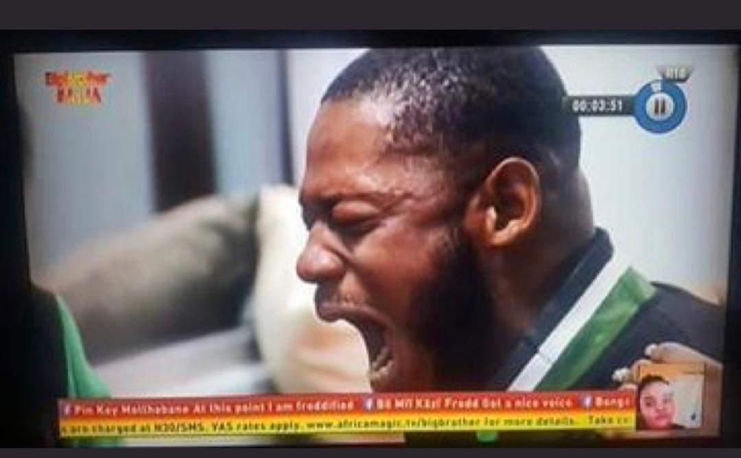 Africa Magic Official Website - Big Brother Nigeria